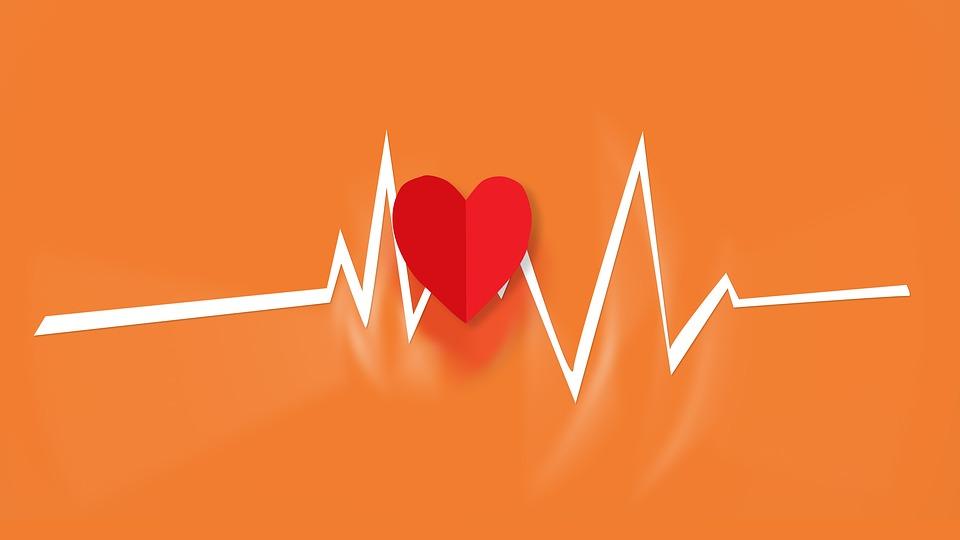 L'électrocardiographe